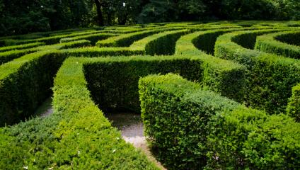 Don't let your intranet become a maze where it's impossible for employees to find information.