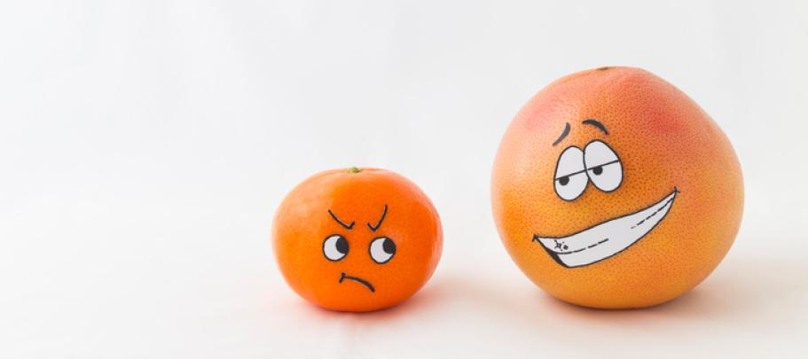 Like citrus fruits, employee town halls can be fresh and unexpected
