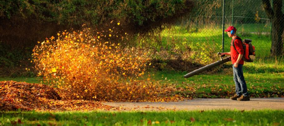 Leaf blowing make sure employee surveys aren't confusing